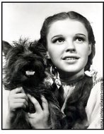 The Wizard of Oz movie still: Dorothy (Judy Garland) and her dog Toto