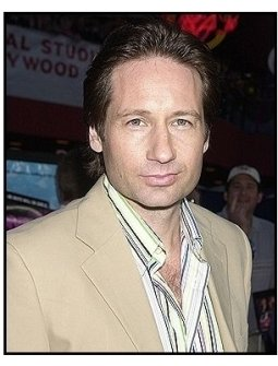 "David Duchovny at the ""Connie and Carla"" Premiere"