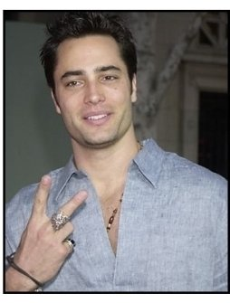 "Victor Webster at the ""Bringing Down the House"" Premiere"